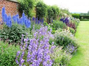 Trvalkový-záhon-pri-záhradnom-múre-doplnený-popínavkami-300x225