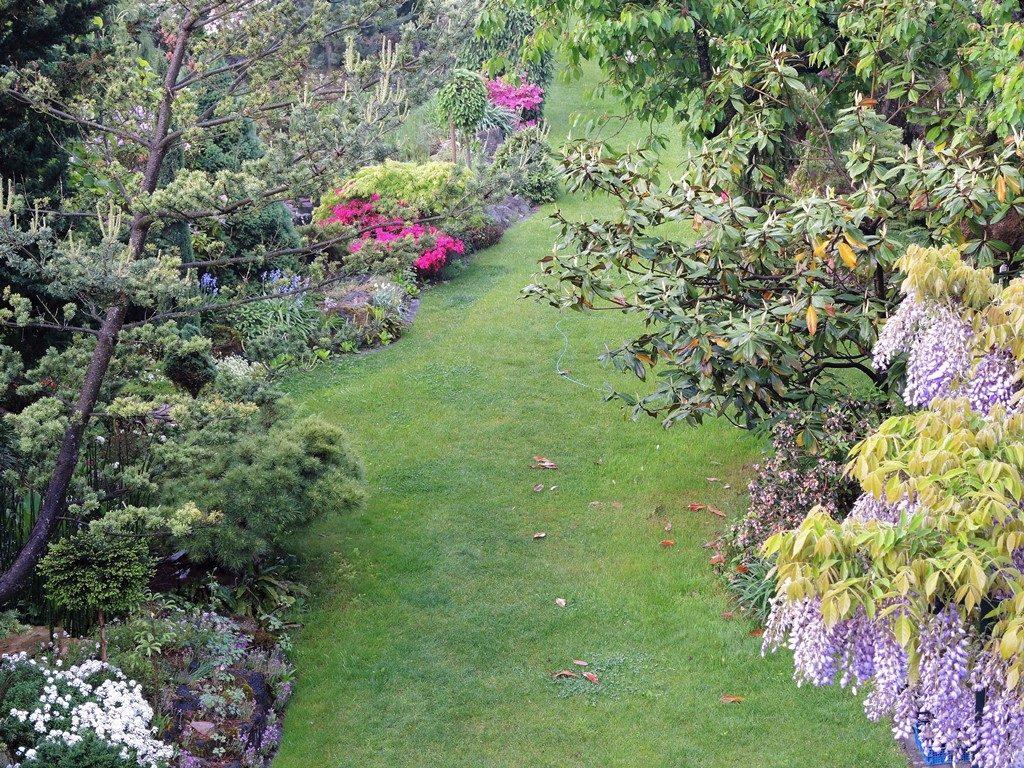 Jar-v-záhrade-pri-pohľade-z-okna-1024x768