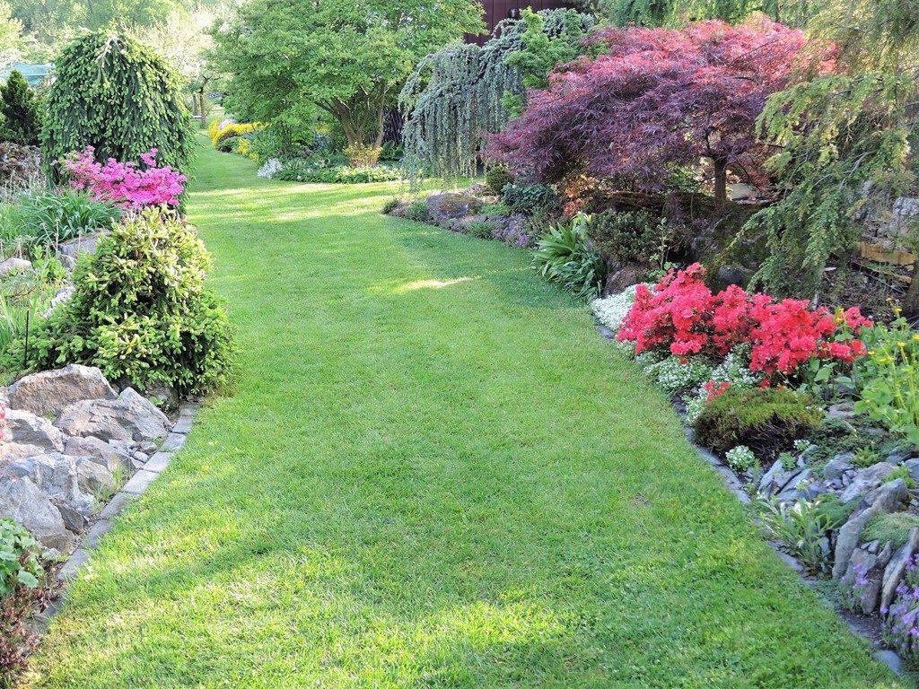 Jar-v-záhrade-spestrujú-rozkvitnuté-azalky-1024x768