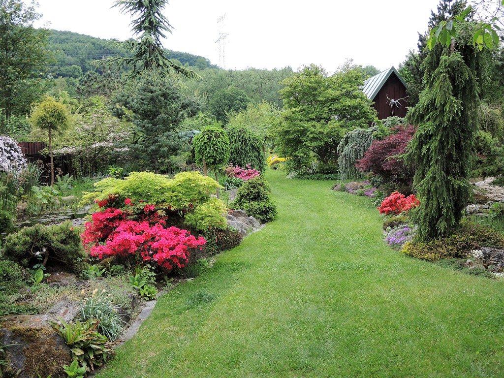 Jar-v-záhrade-vrcholí-1024x768