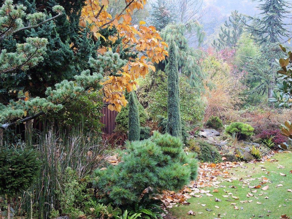 Jesenná-nálada-v-okrasnej-záhrade-1024x768