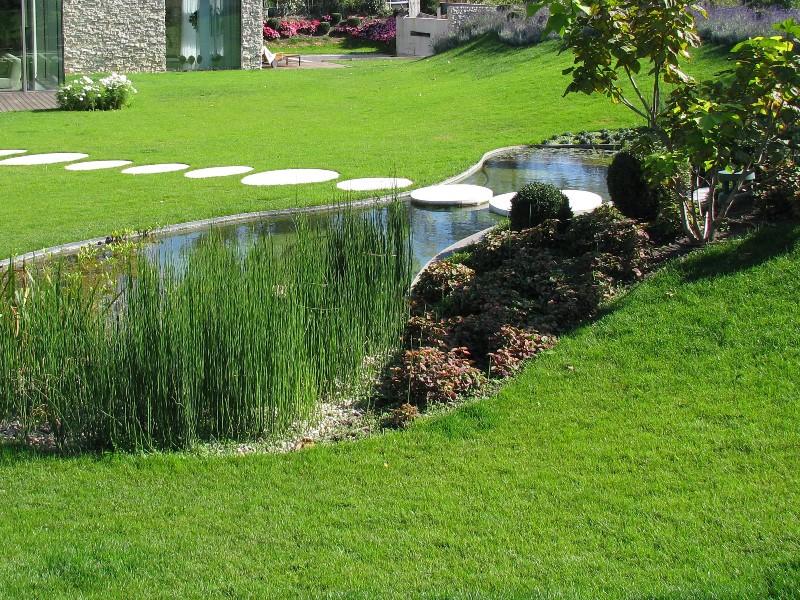 Okrasné-jazierko-v-modernej-záhrade