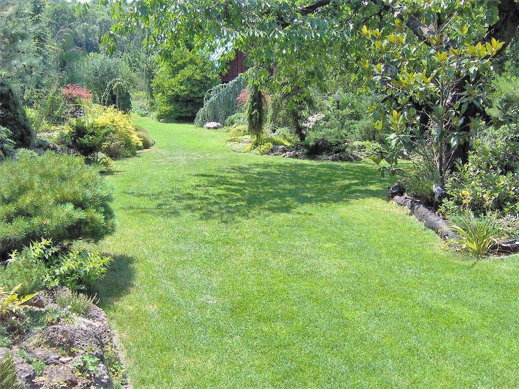 Po-pestrofarebnej-jari-leto-skľudní-záhradu-osviežujúcou-zeleňou-1024x768