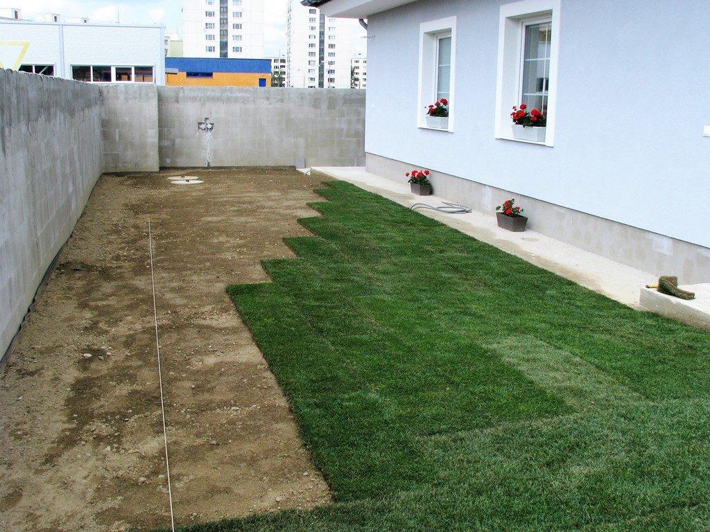 Pokládka-kobercového-trávnika-1024x768