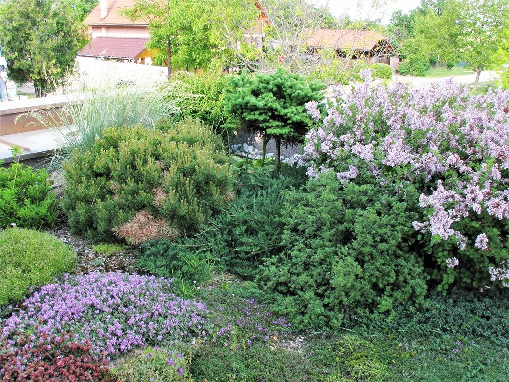 Rozkvitnutá-strešná-záhrada-na-jar-1024x768