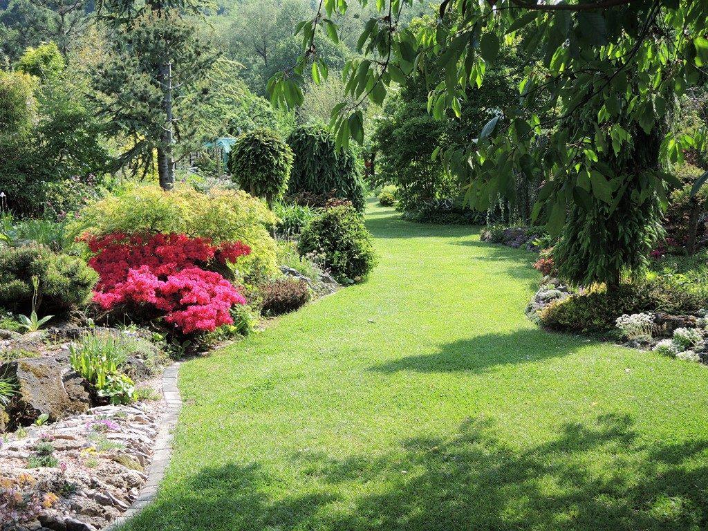 Stredom-dlhej-úzkej-záhrady-vedie-trávnatá-cesta-1024x768