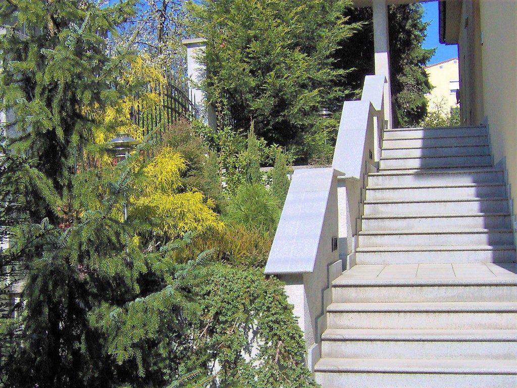 Výsadba-drevín-pozdĺž-schodiska-1024x768