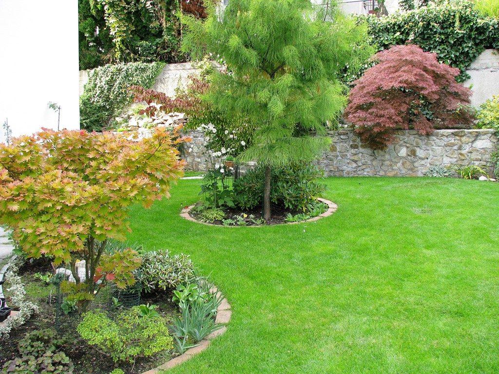 Výsadby-v-trávniku-ohraničené-pásom-zámkovej-dlažby-1024x768