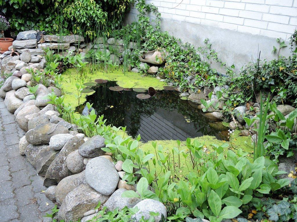 Záhradné-jazierko-po-rekonštrukcii-1024x768