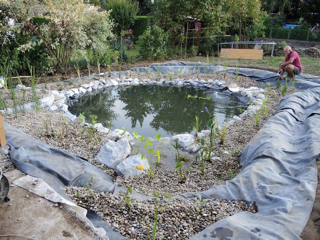 Záhradné-jazierko-vysadené-vodnými-rastlinami-krátko-pred-dokončením-1-1024x768