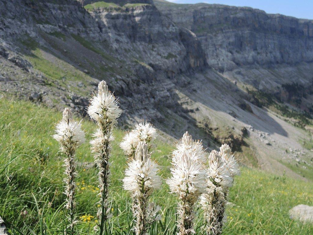 Pyreneje-júl-2013-1041-2-1024x768